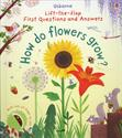 Picture of Lift-the-flap First Questions and Answers: How Do Flowers Grow?