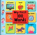 Picture of My First 100 Words