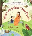 Picture of Lift-the-Flap First Questions and Answers: Where Do Babies Come From?