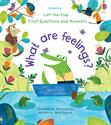 Picture of Lift-the-Flap First Questions and Answers: What are Feelings?