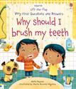 Picture of Lift-the-Flap Very First Questions and Answers: Why Should I Brush My Teeth?