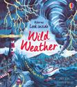 Picture of Look Inside Wild Weather (IR)