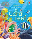 Picture of Peek Inside a Coral Reef